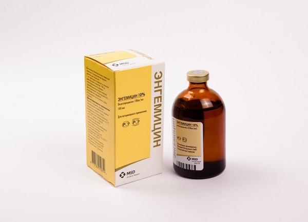Engemicin__tcm53-22017